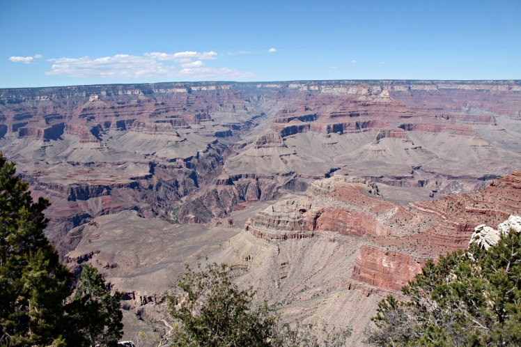 Grand Canyon First Picture
