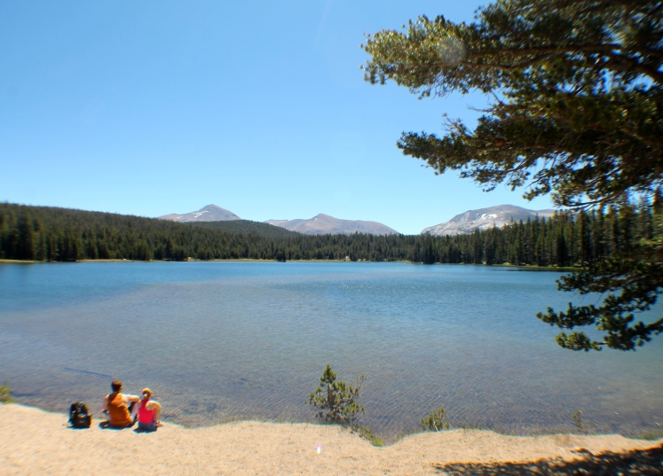 Couple Dog Lake