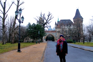 My Trip this year Budapest Castle