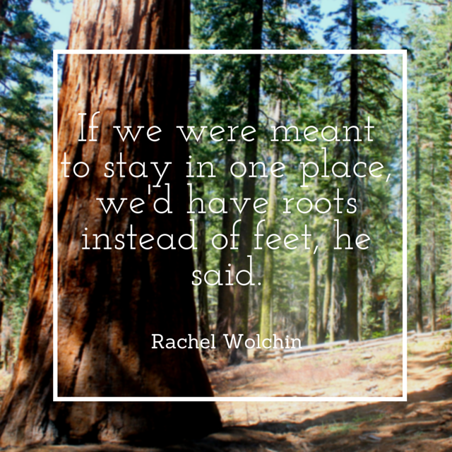 If we were meant to stay in one place quote